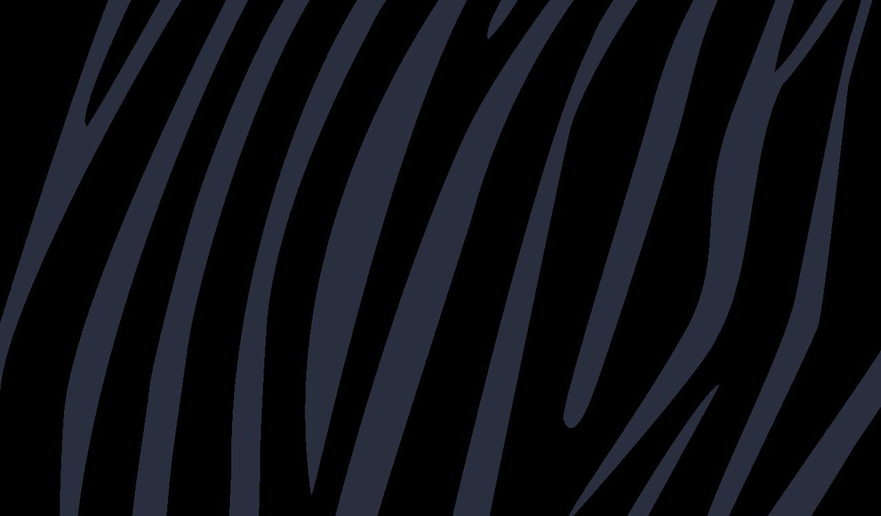 zebra 26
